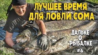 Когда лучше ловить сома | #Дальке о рыбалке 6 | Когда клюёт сом