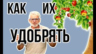 КАК УДОБРЯТЬ плодовые деревья / Схема удобрения по сезонам / Игорь Билевич