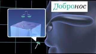 видео Фильтр для носа Pit Stopper (блокиратор насморка) стандартного размера (L) 8,5 мм