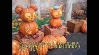 Ken's Autumn Dream in Japan - Part II|ケンホー日本の秋を歩く 第2弾:ディズニーシーと成田の町