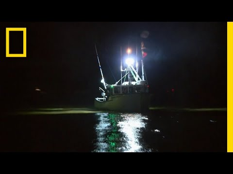 Take It to the Bridge | Wicked Tuna: Outer Banks