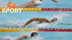 Wellbrock gewinnt Medaillenwettkampf | Schwimm-WM 2019 - ZDF