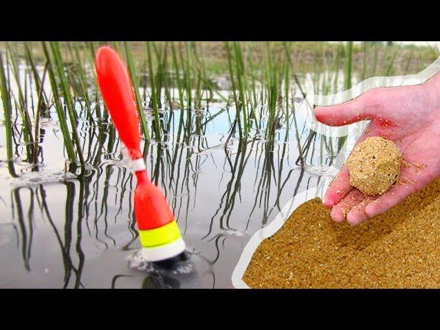 ХИТРАЯ ПРИКОРМКА ОЖИВИЛА ЛУЖУ! РАБОТАЕТ!!! Рыбалка на карася в июне на удочку