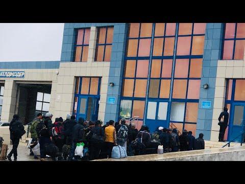 #Ужас на границе Казахстан-Узбекистан#День второй#Узбекистан#Казахстан#