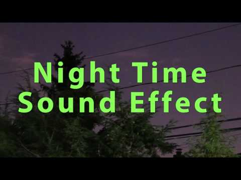 Night Time Sound Effect