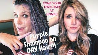 How To Use Purple Shampoo   Best Purple Shampoo Technique!!