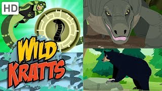 Wild Kratts 🐉🐍 New Creature Adventures! (Part 4) 🦈🐟 | Kids Videos
