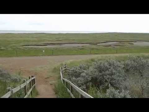 Panorama from Gibraltar Point Nature Reserve Skegness Lincolnshire Wash