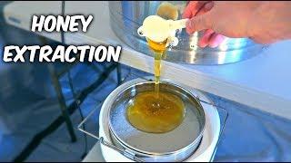 Harvest Honey - Part 2