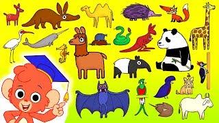 Hayvan ABC | çocuklar | 223 Vahşi Hayvanlar için 26 KARİKATÜR HAYVANLAR ile Alfabeyi Öğrenmek ve 4K Geliyor