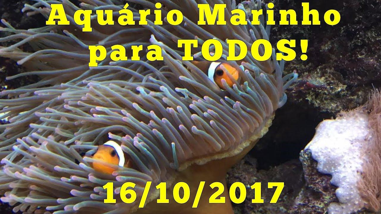 O aquarismo marinho NUNCA MAIS será o mesmo!