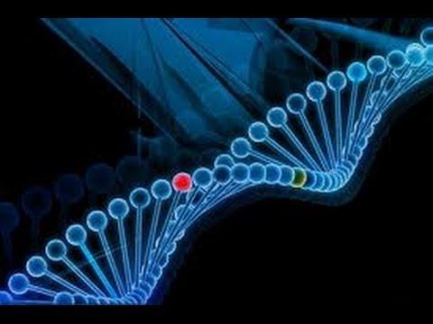 США 1687: делиться ли с окружающими результатами генетического теста?