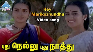 Pudhu Nellu Pudhu Naathu Tamil Movie Songs | Hey Marikozhundhu Video Song | Sukanya | Ilayaraja