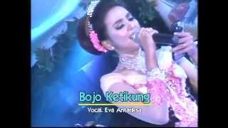 03 Bojo Ketikung II Areva Music Hore Live Sumuran