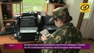 Белорусские пограничники смогут учиться дистанционно