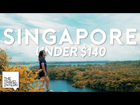 Singapore Budget Travel Guide: 5 Days Under S$140 | The Travel Intern