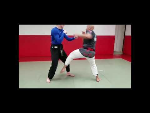 Japanese Jiu Jitsu (modern Japanese Jiu Jitsu)