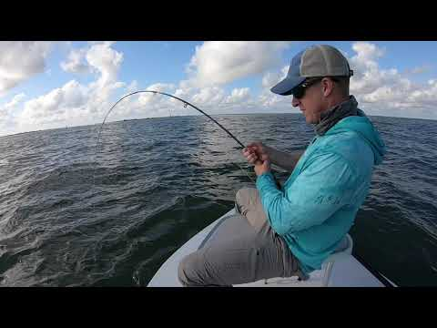 Fly Fishing For JACKS In Texas