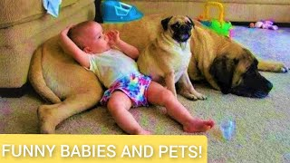 The Cute baby and Funny Animals Compilation - Kids and Pets #27