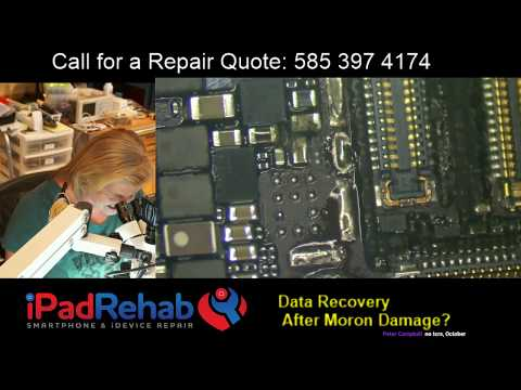 Data Recovery After.....Moron Damage?
