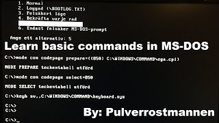 Learn basic commands in MS DOS Video