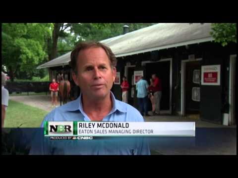 Nightly Business Report: Saratoga horse auction
