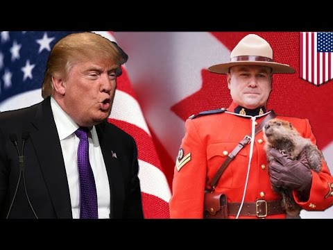 USA vs Canada: America will go to war with Canada over spilled milk and softwood