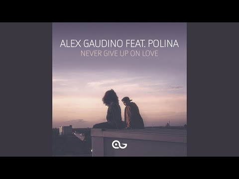 Never Give Up on Love (feat. Polina)