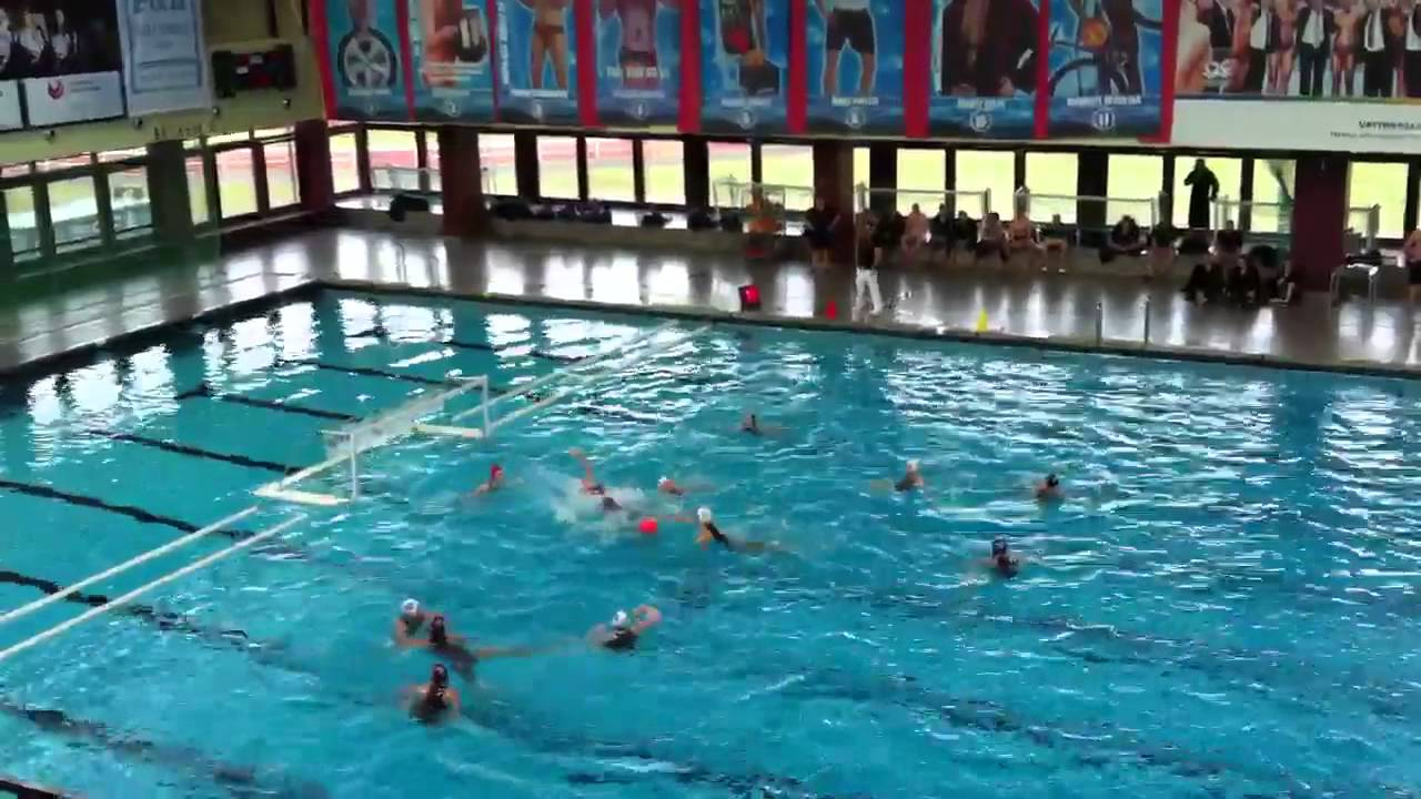 Wasserball Bundesliga
