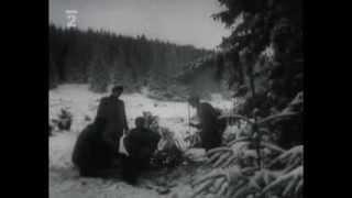Ťažba dreva na Orave (1960)