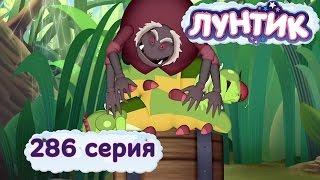 Лунтик и его друзья - 286 серия. Бочка с вареньем
