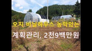 """정선부동산 정선토지 """"오지 비닐하우스 농막있는…"""