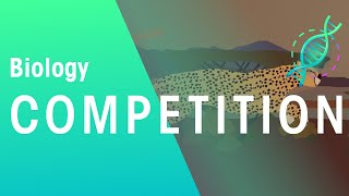 Competition and Natural Selection | Biology for All | FuseSchool