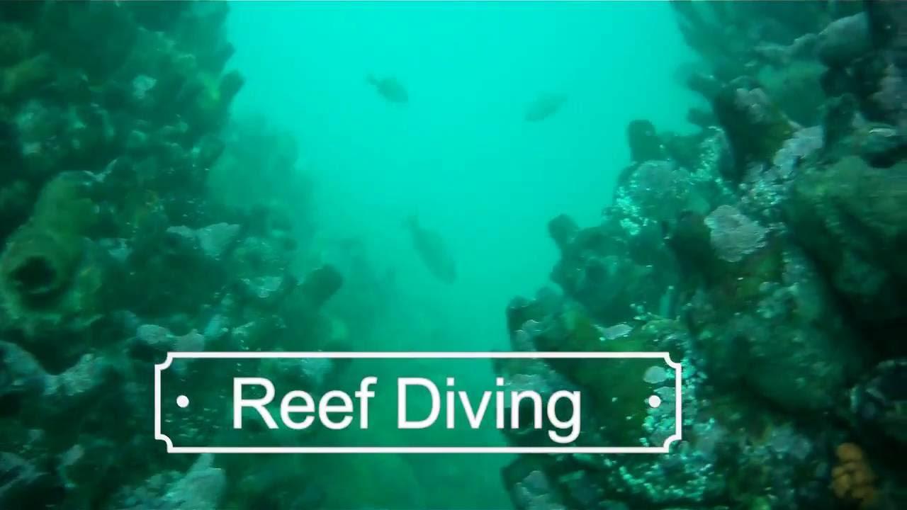Commercial Diving School