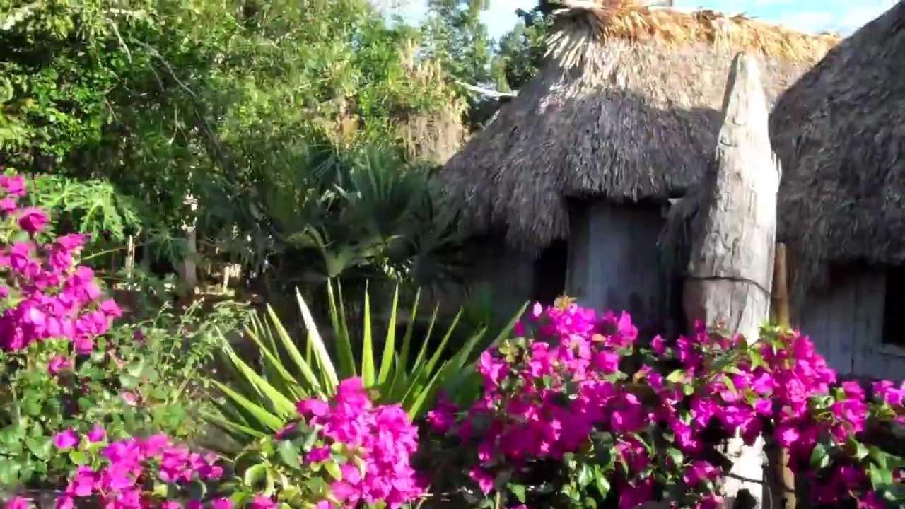 Casa humilde pero jardin bonito mas palapa maya y plantas for Jardines pequenos para frentes de casas