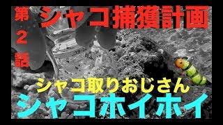 MOAMOAちゃんねる #海水水槽 #アクアリウム チャンネル登録よろしくね  →http://www.youtube.com/channel/UC0DTUajGd5tMtnxmL-qxIzQ?sub_confirmation=1 ...