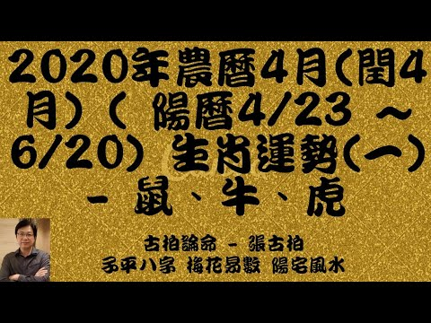 20204(4)(4/23 ~ 6/20) ()