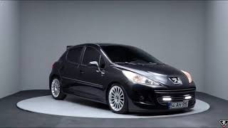 Peugeot 207 Tuning   ►  Peugeot Best  ► Peugeot 207 Fan TR