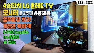G-SYNC 48인치 LG올레드TV, 모니터로 당장 구…