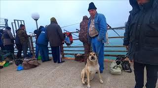 Утро на море Пришел на рыбалку а там борода Лазаревское 1 Мая 2021