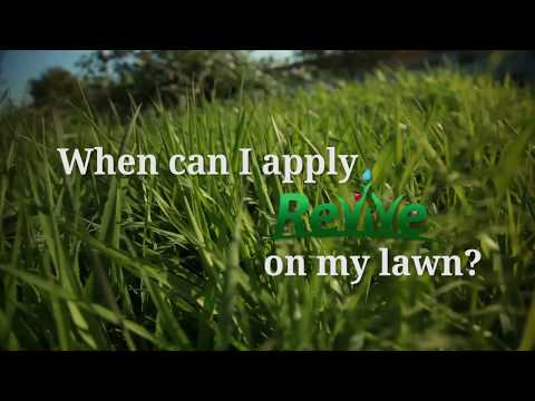 When Should I Apply Revive On My Lawn When To Fertilize Lawn Youtube