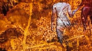 The Fruit of Paradise ('Ovoce Stromu Rajských Jíme') - Opening Sequence