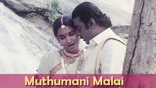 Muthumani Malai - Vijaykanth, Sukanya - Chinna Gounder - Ilaiyaraja Hits - Super Hit Romantic Song