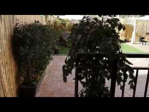Atiko Gran Terraza En Un Patio De Manzana