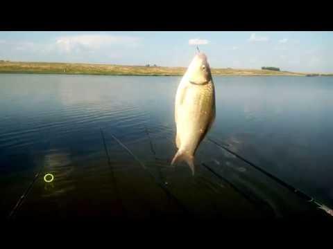 Pescuit la undita si la lanseta pe Lacul Boteni 3 dupa ploi