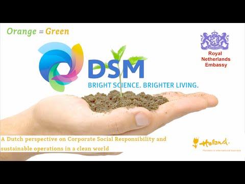 CSR, Orange = Green, presented by Ruud Gal, site manager DSM