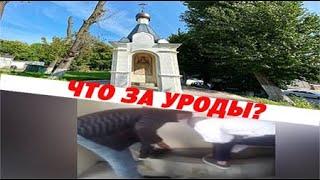 Кавказцы осквернили православную святыню в Калининграде