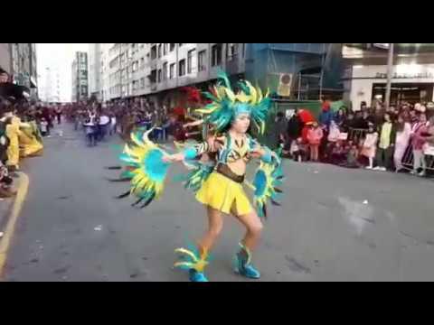 Pontevedra se rinde un año más al desfile de Entroido