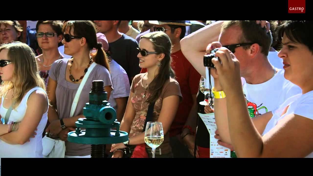 Pálavské vinobraní 2013