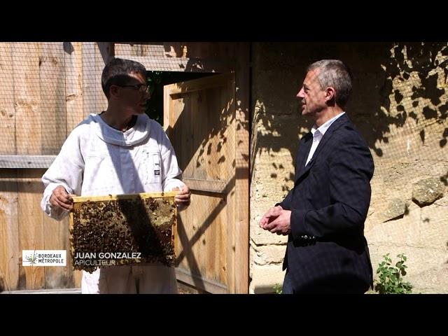 Bordeaux : l'happyculture en ville